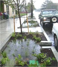Bioswales filter stormwater in Portland, OR. Click image for many more examples and visit the Slow Ottawa 'Streets for Everyone' board for more beautiful street solutions.