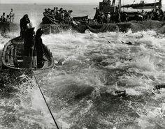 TALY. Sicily (1951) © Favignana Tonnara | Magnum Photos