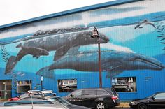 Gray Whales Mural on Bay Street in Newport Oregon Street Mural, Street Art, Newport Beach Oregon, Underwater Room, Oregon Vacation, University Of Oregon, Whale Watching, Oregon Coast, Vacation Destinations