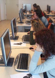 Hugoa Araújo, no UOL Você consegue ficar por horas no computador, navegando pela internet, assistindo a vídeos e interagindo nas redes…