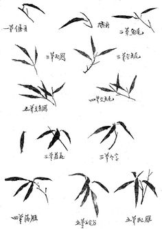 How to paint bamboo leaves Japanese Ink Painting, Sumi E Painting, Japanese Watercolor, Japan Painting, Chinese Painting, Japanese Art, Painted Bamboo, Bamboo Art, Chinese Bamboo