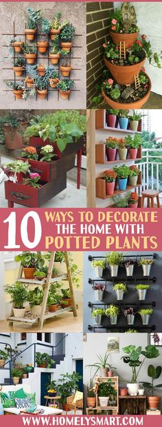 If your home already have lots of potted plants, it's time to utilize it as home decor with these creative ways! See more via homelysmart.com