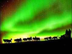 The beauty of Alaska. .X.