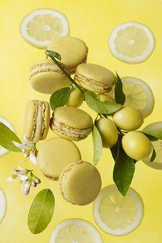 Lemon macarons.