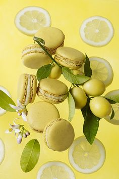 Lemon macarons. I've never had one, and I don't even know if I'd like them, but they're adorable.