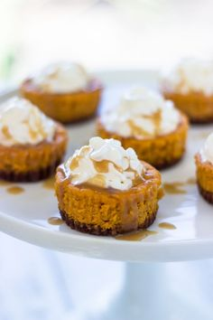If you're a fan of pumpkin pie, you're going to love these mini pumpkin cheesecakes. They are super creamy and packed with pumpkin flavor and baked on a gingersnap crust. They are then topped with ...