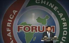 Johannesburg Zirvesi ve 6. Çin - Afrika İşbirliği Forumu