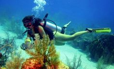 El Heraldo - ProExport app para #Turismo en #Colombia #Buceo #PescaSubmarina San Andreas, Largest Countries, Countries Of The World, Spanish Speaking Countries, Open Your Eyes, How To Speak Spanish, The Republic, Marine Life, Scuba Diving