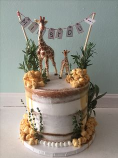 Jungle themed naked cake @sugarush_red_bank