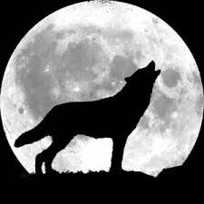 wolf silhouette moon - Google Search