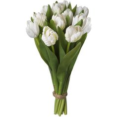 SIA White Artificial Tulip Bundle x 12 Height 30cm ($38) ❤ liked on Polyvore featuring home, home decor, floral decor, flowers, fillers, plants, accessories, artificial flower stems, fake flower arrangement and silk flower bouquets