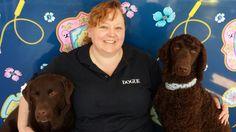 6 Career Choices for Dog Lovers | Australian Dog Lover