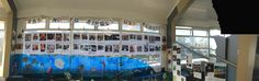 panoramic view - Plastic Free July art installation displayed at Manly Sea-Life