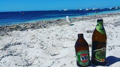 Cold Beverages  #rottnestisland #rottnest #island #wa #westaustralia #indianocean #australia #perth #ocean #sea #beautiful #beach #reef #tbt #perfect #sunshine #picoftheday #photooftheday #vb #victoriabitter #beer #brew #icycold #bulmers #bulmerscider by petebull13 http://ift.tt/1L5GqLp