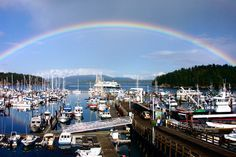 Google Image Result for http://www.marinalife.com/images/company/8490_122607021824.jpg  Friday Harbor, WA.....I want to go back!