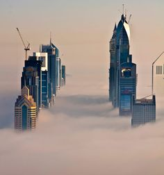 As far as I can tell - these are ACTUAL photos.  Cool perspective!    Eerily calm ... Dubai blanketed in fog  Shiva Menon / Solent News & Photo