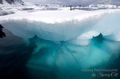 Under an Iceberg! #gadv #ottantarctica