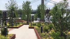 """Résultat de recherche d'images pour """"domino park new york"""""""