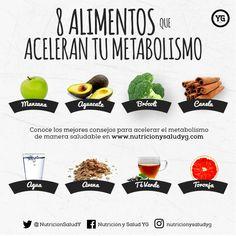 Para el meriendas metabolismo acelerar