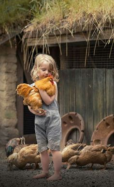 boy chickens barn off grid life Animals For Kids, Farm Animals, Animals And Pets, Cute Animals, Country Life, Country Girls, Country Girl Pictures, Farm Pictures, Country Living