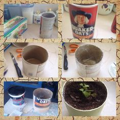 Plant Pot out of Oat box