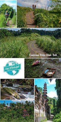 Campahun Ridge Walk in Ubud, Bali   Flickr - Photo Sharing!