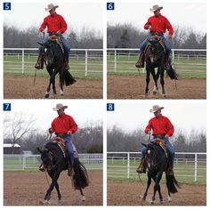 Horse Training: The Sidepass from Horse&Rider | EquiSearch