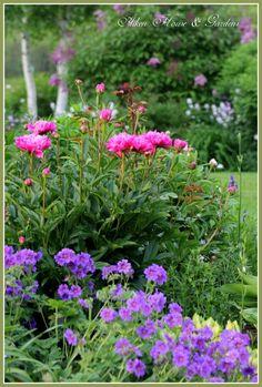 Aiken House and Garden,