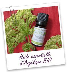 Antispasmodique, cette huile essentielle lutte contre les états de stress et de fatigue, les troubles digestifs et les gaz intestinaux. Les chinois lui attribuent la propriété d'augmenter la fertilité.