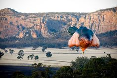"""""""THE SKYWHALE"""" HOT AIR BALLOON BY PATRICIA PICCININI http://www.juxtapoz.com/current/the-skywhale-hot-air-balloon-by-patricia-piccinini"""
