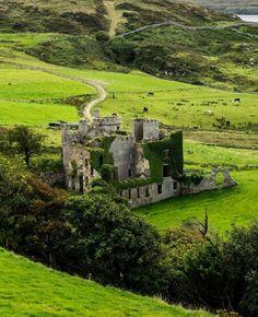 Clifden Castle . Ireland: More