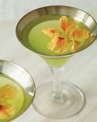 Garden Elixir Recipe on Food & Wine