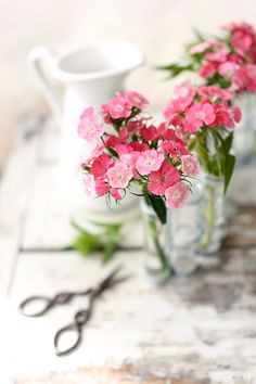 sweet little flowers, I love putting these little vases in unexpected places around the house :)