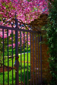 376 Best Entrance Gates Images On Pinterest Gates