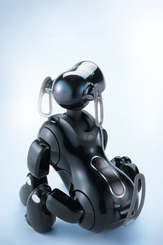 What's the matter with AIBO? #RasBlog
