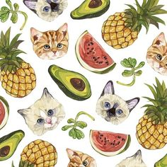 Cats and pineapples