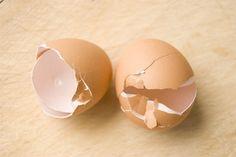 I gusci delle uova…