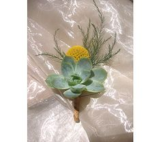 Westwood Flower Garden - Succulent Boutonniere