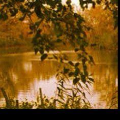 Stanislaus River