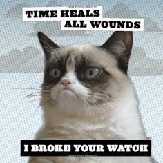 Grumpy Cat 2014 Wall Calendar. For the details or ordering click on the image or text! #GrumpyCat #Calendar