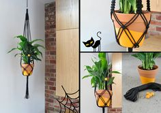 by Warp & Weft Materials and tools: ◦Black cord, 5 millimeters thick: 8 lengths, each 12.8 feet (3.9 meters) long ◦Black cord for wrapped knots: 2 lengths, each 24 inches (60 centimeters) long ◦4 natural wooden beads, 15 mm diameter ◦Terra-cotta pot, about 8 in. (20 cm) diameter ◦1 indoor plant (10 Top Plants to Grow Indoors) ◦1 metal O-ring ◦Orange paint ◦Paintbrush ◦Scissors