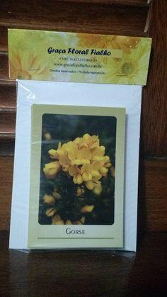 Jogo Belas Imagens Cards Florais de Bach
