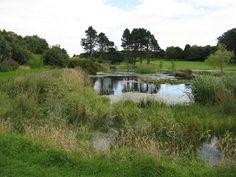 Elf Loch on Mortonhall golf course, Edinburgh, Scotland