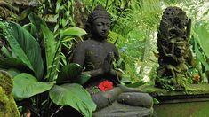 #bali #travel #buddhism #viaggi #indonesia