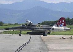 Caça F5E - Base Aérea de Santa Cruz - Rio de Janeiro - Brasil