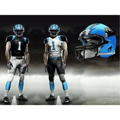 Carolina Panthers rock!