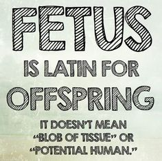 """Fetus is latin for offspring. It doesn't mean ""blob of tissue"" or ""potential human."" #Abortion #Prolife #Life #Pro #Fetus"