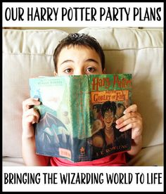 A Well-Feathered Nest: Harry Potter Party: Part One - the Overview
