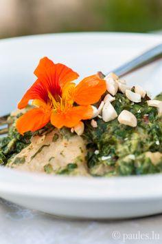 foodblog: paules ki(t)chen » Blog Archiv » • Kniddelen mit Spinat-Mandel-Sauce