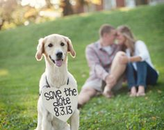 save the dates with a dog - Google Search